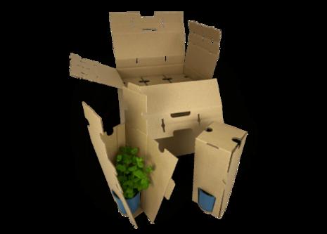 Versandverpackung für Kräuter