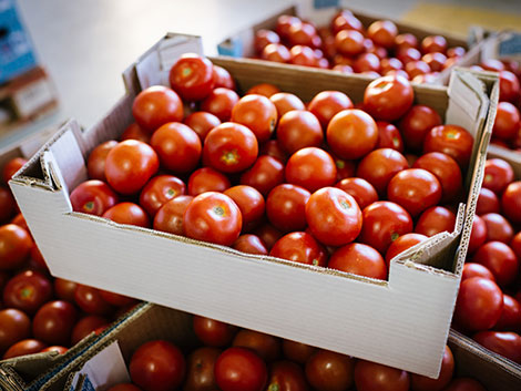 packing filled with tomatoes