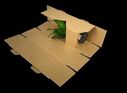Gewickelte Pflanzenversandverpackung
