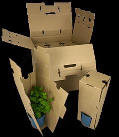 Versandverpackung für Kräuterpflanzen