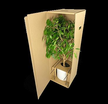 Versandverpackung für schwere Pflanzen