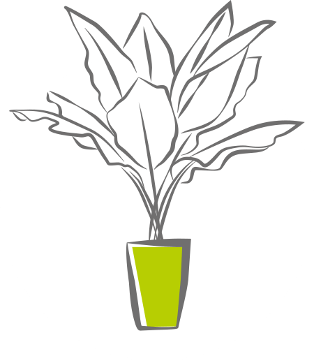 Skizzierte Abbildung einer Topfpflanze